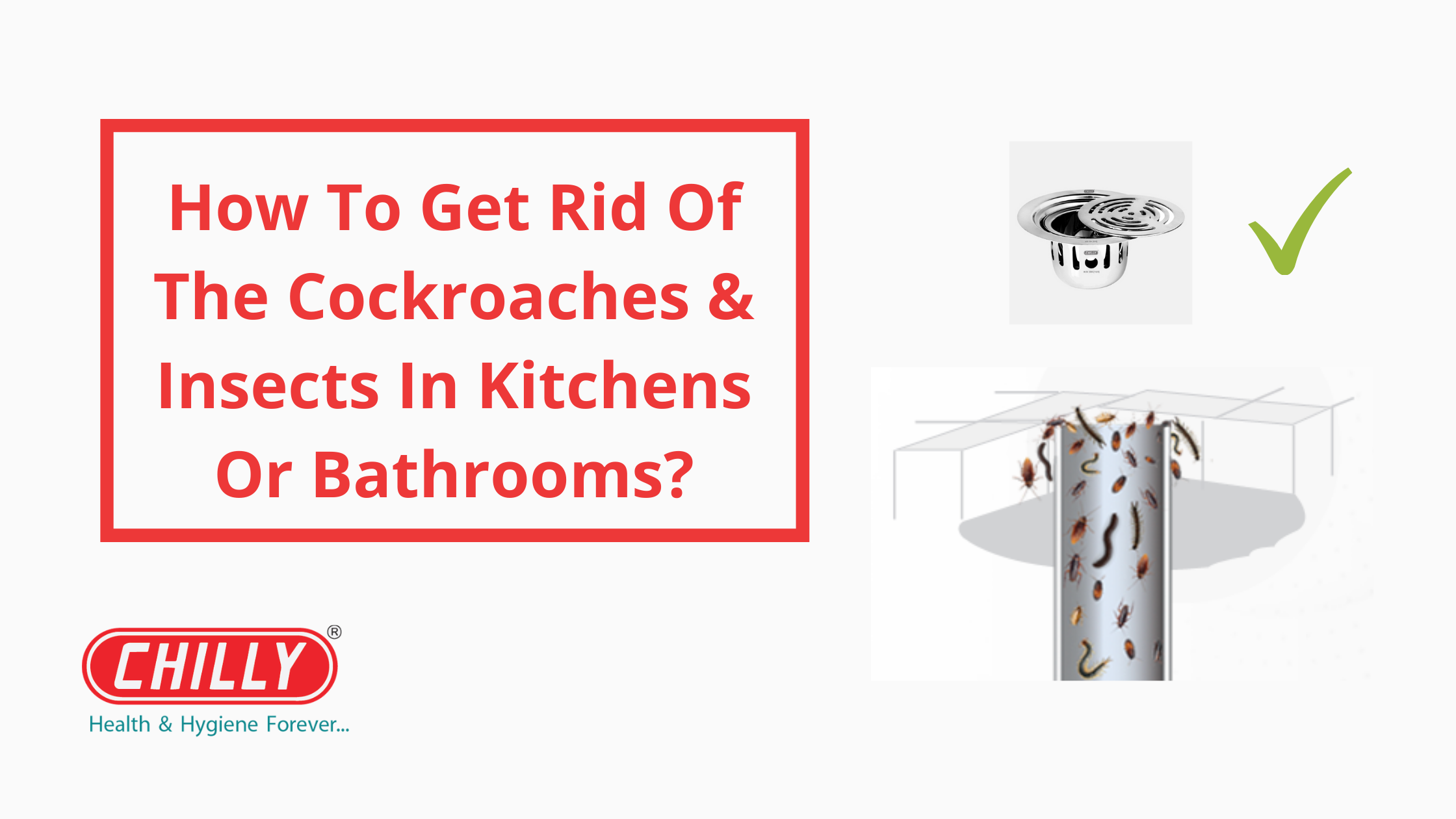 How To Get Rid Of The Cockroaches & Insects Entering Your Living Areas From The Drains In Kitchens Or Bathrooms